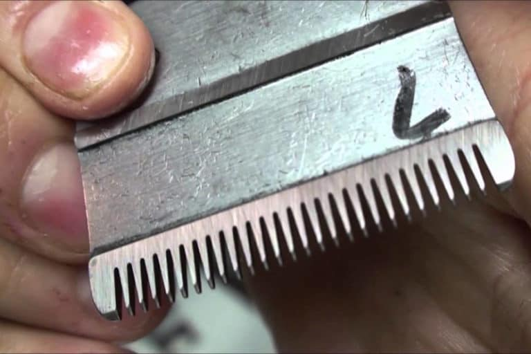 How to Sharpen Hair Clipper Blade- Step By Step Guide