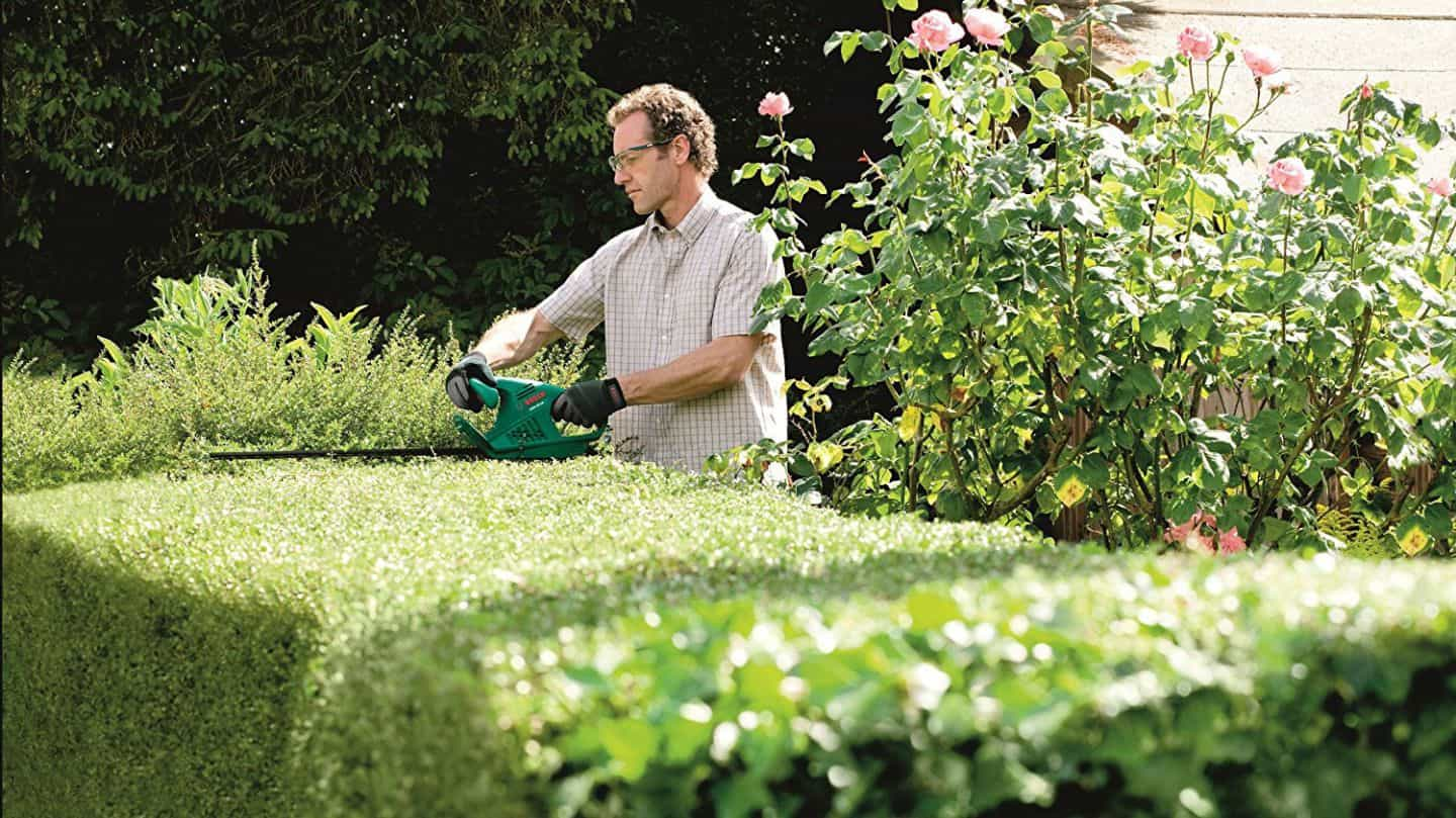 best electric hedge trimmer for hedges and garden
