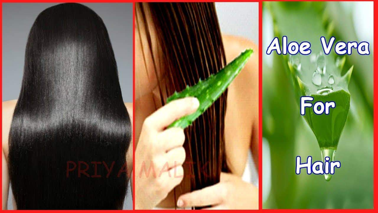 how growth thicker hair with Aloe Vera